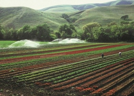 irrigation_land_mangement_for_lamaclima_-skeeze-pixabay.jpg